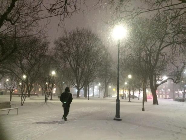 snow chantal